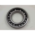 Single Row Deep Groove Ball Bearing (16021)