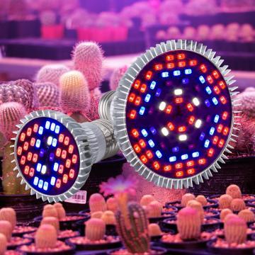 LED Full Spectrum Plant Growing Lamp E27 Phyto Light 30W 50W 80W Flower Seed Grow Light Bulb LED Hydroponics Seedling Fito Lamp