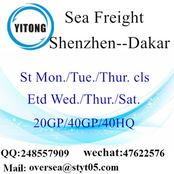 Shenzhen Port Sea Freight Shipping To Dakar