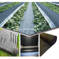 agricultural ground cover net