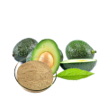 Water Soluble Avocado Extract Powder for Beverage
