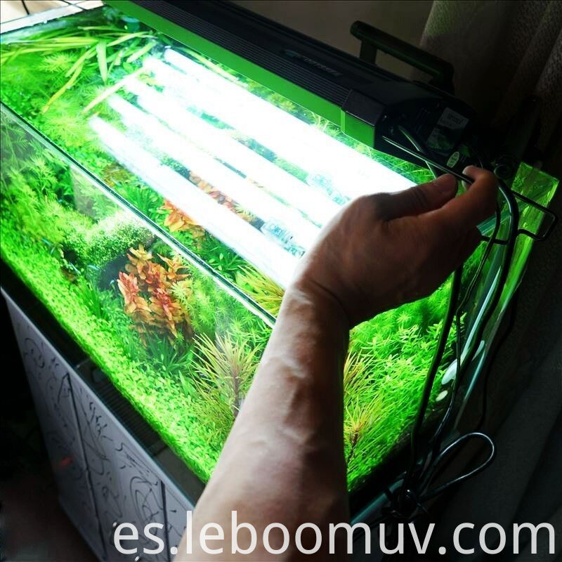 Aquarium Fluorescent Light