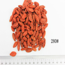 Certified Size 280 Organic Dried Goji