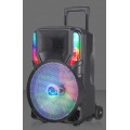 Strong Bass 12inch Portable Trolley Speaker Lighting