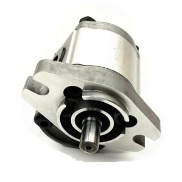 hydraulic Gear Pumps in Hawaii