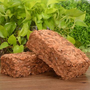 500g Green Natural Plant Coconut Shell Brick Universal Organic Nutrient Soil Coarse Grain Coconut Brick For Garden Vegetable