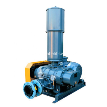 Positive Displacement Blowers Factory