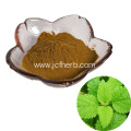 Catnip Extract Powder/Nepeta Cataria