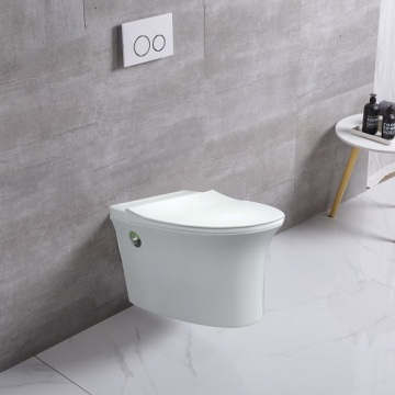 Pulse Tankless Toilet Bathroom Toilet