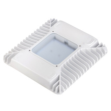 60w LED Canopy Light Fixtures For Gas Station