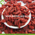 Factory Wholesale Super Food Nutrition Ningxia Goji Berries