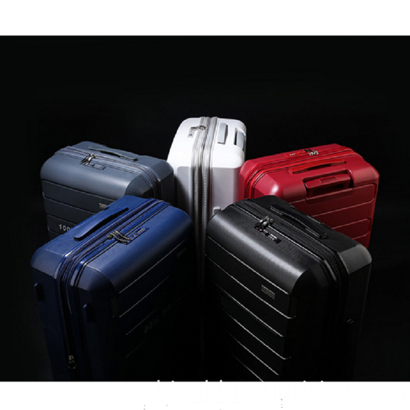 Colorful Pp Luggage