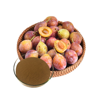 Best organic plum powder