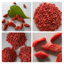 EU Certified Organic Goji Berries