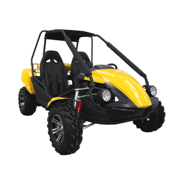 essence 250cc dune buggy 2 places go kart