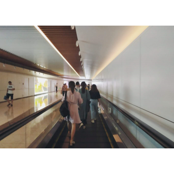IFE GRACES-T2 Automatic Moving Sidewalk