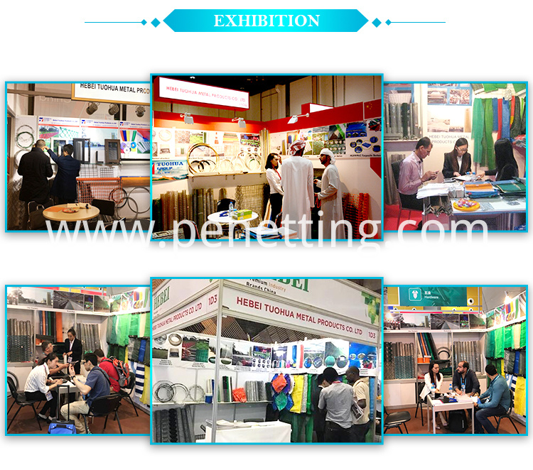 Plant support net factory Exhibition