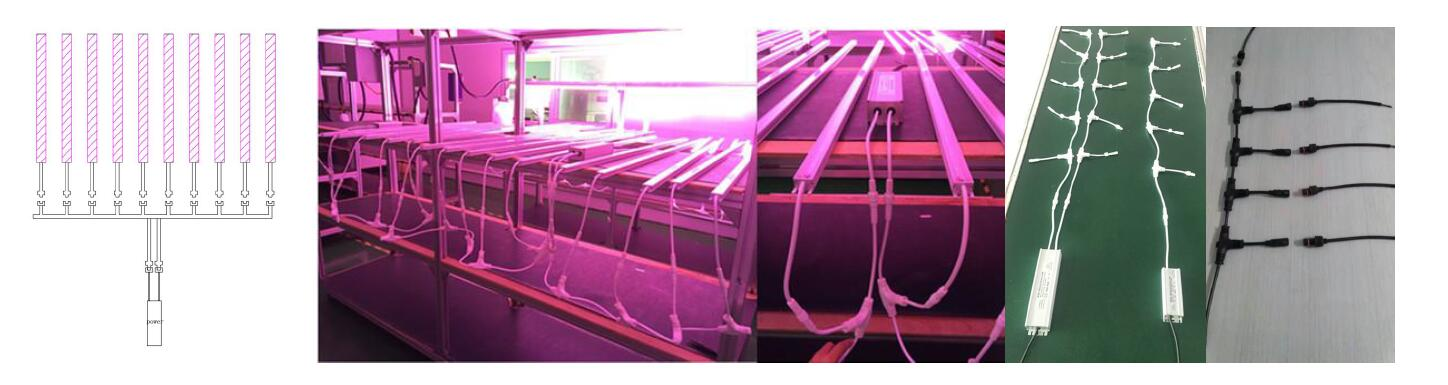 LED grow bar light