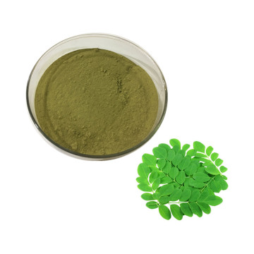Supplement Bulk Powder moringa leaves extract