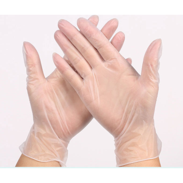 Clear Healthcare Disposable Glove