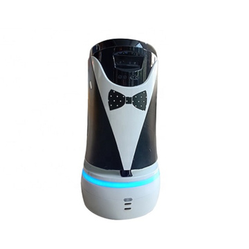 Best Quality Hotel Robot Service