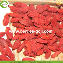 Factory Wholesale Dry Fruits Sun Dry Wolfberry