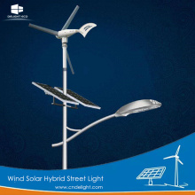 DELIGHT Wind Solar Hybrid Garden Light LED Prices