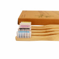 Adult Printed Professional Fiber  Bamboo Toothbrush