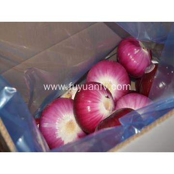 fresh peeled red onion