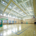 3.5mm thick sport indoor futsal court floor