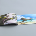 Tri-fold A4 Booklet Printing Colorful Company Brochure