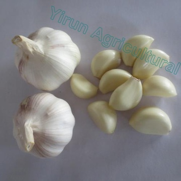 Normal White Pure White Garlics of 2018 Crops