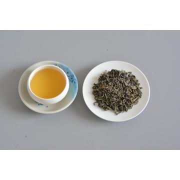 Green tea factory premium organic tea OP 9101