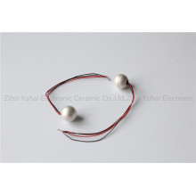 Piezo Ball Sphere Parts for Hydrophone OD15