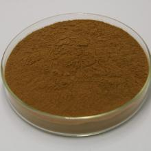 Chinese Angelica Extract Angelic (sinensis (Oilv) Diels