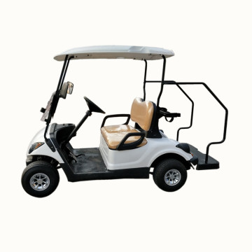 2 seater electric golf cart for sale