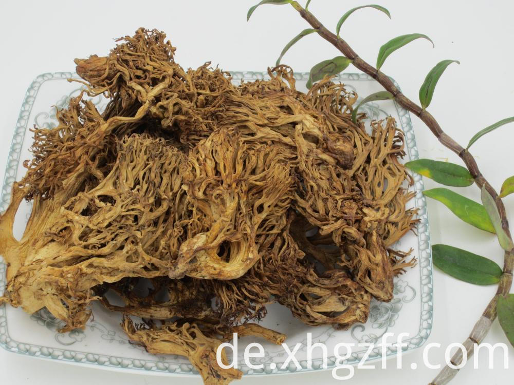 Rhizoma Zingiberis Essential Oil Benefits