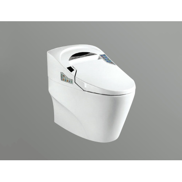 Smart Washdown Toilet JA0212