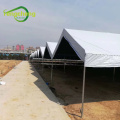 8mil panda film greenhouse cover fabric