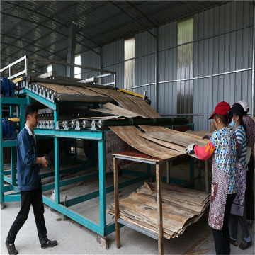 Biomass Type Veneer Dryers Machines