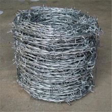 galvanized security fencing barbed wire per roll price