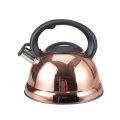 Whistling Tea Kettle with Cool Grip Handle