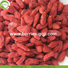 Wholesale Import Nature Eu Standard Goji Berry