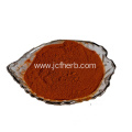 Tea Polyphenols Powder Tea Extract Powder Polyphenol 98%