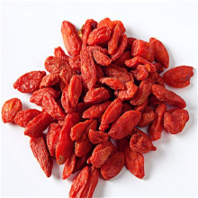 Low calorie food organic dried goji berries