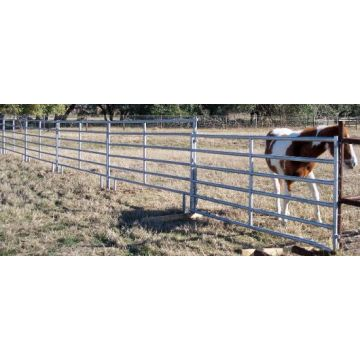 Used Metal Horse pipe Fence Panels high quality