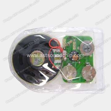 Waterproof Sound Chip, Waterproof Voice Module