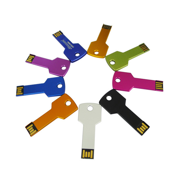 Promotional Gift USB Stick