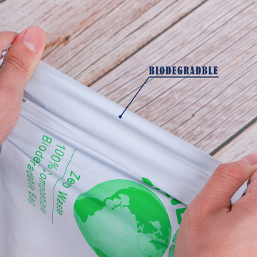 Custom Printed Biodegradable Mailing Shipping Express Bags