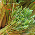 Natural Lemongrass oil customize package bulk top grade